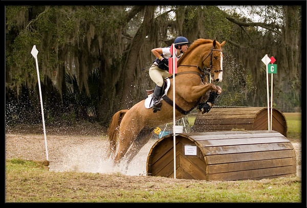 Horses jumping cross country - photo#17